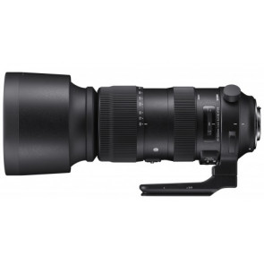 SIGMA 60-600mm F4,5-6,3 DG OS HSM | Sports (Nikon)